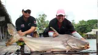 getlinkyoutube.com-7 Day@Bungsamran FishingPark Full