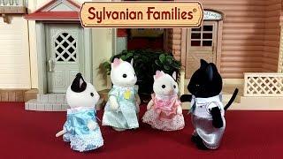 getlinkyoutube.com-Семья черно-белых котов Сильваниан Фэмилис обзор новинки + мультик из игрушек