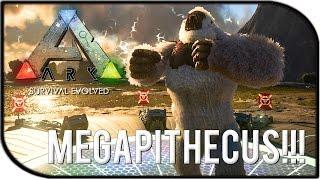 """getlinkyoutube.com-ARK: Survival Evolved MEGAPITHECUS / GORILLA BOSS GAMEPLAY - """"THE TAMED GORILLA BOSS!!!"""""""