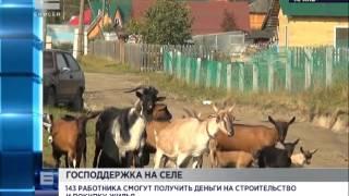Господдержка на селе (Новости 06.04.16)
