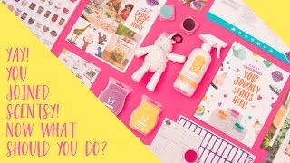 I just joined Scentsy! Now what? 1/4