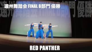 遠州舞踏会final B部門優勝 RED PANTHER