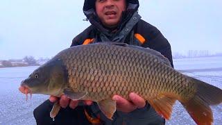 getlinkyoutube.com-Рыбалка зимой. Ловля огромных карпов со льда