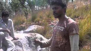 getlinkyoutube.com-RASAMANI SIDDHAR , SISHYAS EXPLAINING ABOUT RARE HERBAL PLANT - KAL THAMARAI