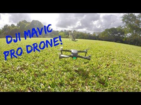 Gohan The Husky vs NEW DRONE!!