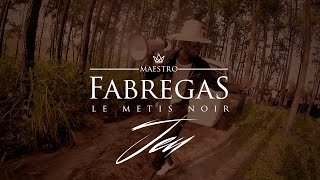 Fabregas Le Métis Noir - Jeu