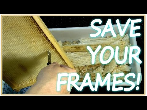 Beekeeping - how to SAVE your wired hive frames