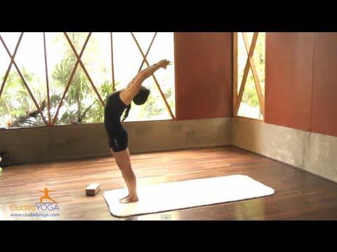 Yoga para Principiantes 1 y 2