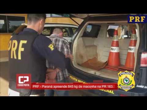 Polícia Rodoviária Federal apreende 845 quilos de maconha e recupera utilitário roubado