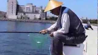 getlinkyoutube.com-さより釣り道具:さよりちゃん / さより爆釣2013 サヨリちゃん