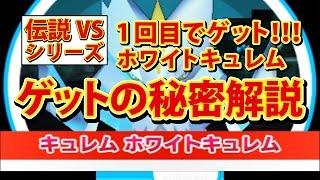【みんなのポケモンスクランブル】3DS ホワイトキュレム 完全捕獲