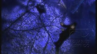 getlinkyoutube.com-Rezza - Biar Menjadi Kenangan | Official Video