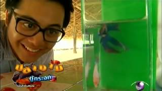getlinkyoutube.com-Farm fish of Thai 3