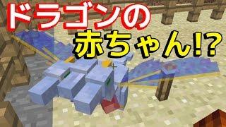 getlinkyoutube.com-【マインクラフト】新!化石から伝説のモンスターを蘇らせる!#21