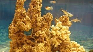 getlinkyoutube.com-Мой аквариум ч.2 красивый декоративный камень самоделки своими руками.