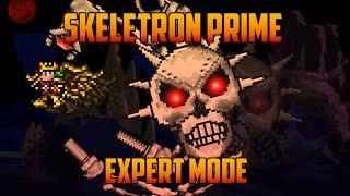 getlinkyoutube.com-Terraria 1.3 - Skeletron Prime, Expert Mode Boss Battle