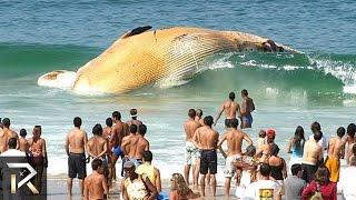 getlinkyoutube.com-10 Strangest Ocean Phenomena You Won't Believe!