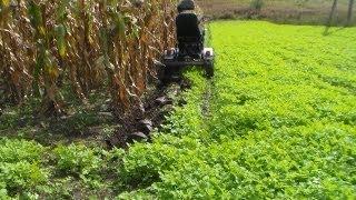 getlinkyoutube.com-Выкопка стеблей кукурузы вручную, в помощь мотоблок с адаптером.