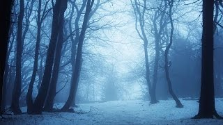 getlinkyoutube.com-Gothic Music Instrumental - Eternal Winter