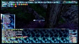 getlinkyoutube.com-FFXI - SCH Kamihr Delve Solo (1-5 + Utkux)