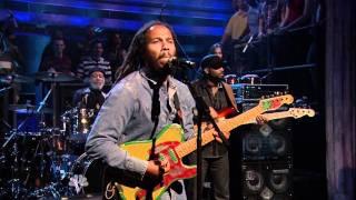 Ziggy Marley - Get Up, Stand Up (Live)
