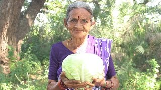 getlinkyoutube.com-How To Cook Cabbage Recipes Village Style By My Grandma || Myna Street Food