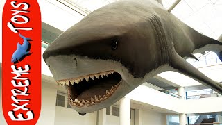getlinkyoutube.com-Extreme Toys TV Lost Files. Sea World, Natural History Museum, and a Giant Dust Storm!
