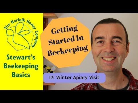 Getting Started in Beekeeping: 17 - Winter Apiary Visit #Beekeeping Basics - The Norfolk Honey Co.