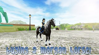 getlinkyoutube.com-Buying a Morgan horse ♡ Star Stable