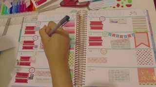 getlinkyoutube.com-Plan With Me~Horizontal Erin Condren~Watermelon Theme