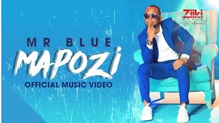 MAPOZI | MR BLUE | Official Video