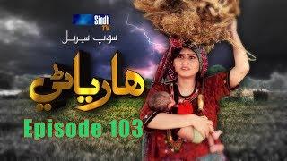 Sindh TV Soap Serial HARYANI EP 103   11 10 2017   HD1080p  SindhTVHD