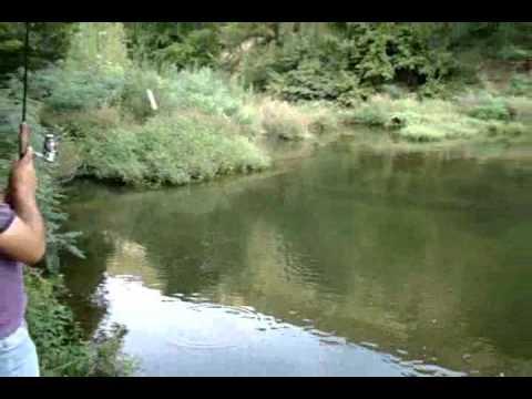 Pescuit la oblete cu taparina cu muste artificiale.wmv