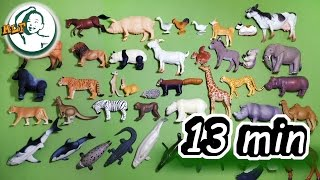 getlinkyoutube.com-Learn all common animals names and sounds with TOMY Ania Animal toys |13 minutes|アニア アニマルだ