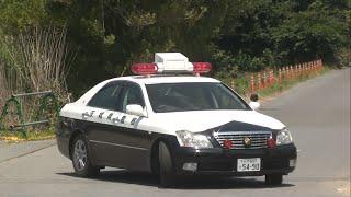茨城県警によるうっきうきの取り締まり サイン会場へいらっしゃいー!