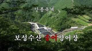 getlinkyoutube.com-(주)씨트라우트 홍보영상 (보성수산, 청골송어)