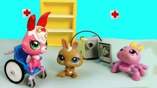 getlinkyoutube.com-LPS Baby Bunny Born - Mommies Part 39 Littlest Pet Shop Series Movie LPS Mom Babies Bulldog