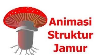 getlinkyoutube.com-Animasi struktur jamur - divisi basidiomycota