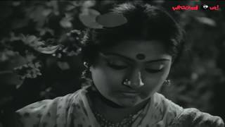 Madhavi and Chiranjeevi Romantic Scene | Kukka Katuku Cheppu Debba Movie Scene