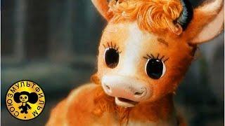 getlinkyoutube.com-Волк и теленок | Советские мультики про волка для детей