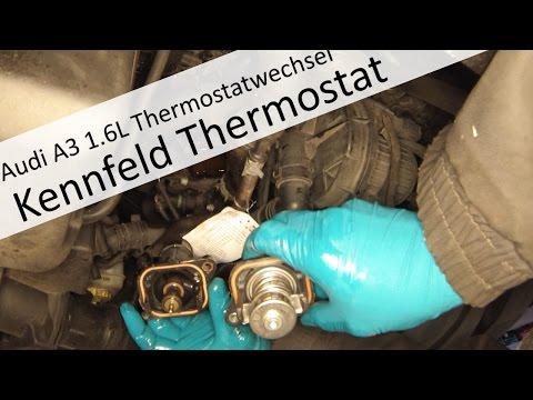 Kennfeldgesteuertes Thermostat wechseln am Audi A3 1,6L