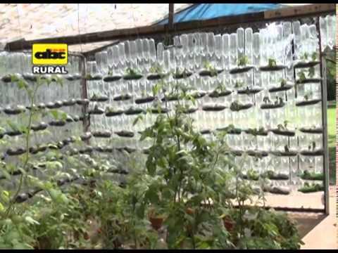 Invernaderos con botellas de plástico