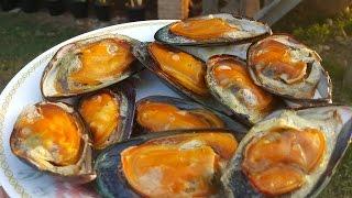 หอยแมลงภู่นิวซีแลนด์ ปิ้งย่างรับลมหนาวเชียงของ New Zealand mussels