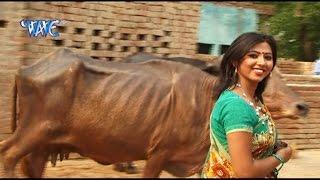 अइसन भैसा न भेटाई - Hothlali Kare Las Las   Sakal Balmua   Bhojpuri Hot Song