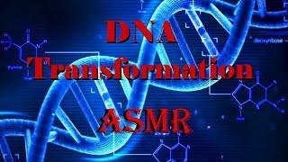 getlinkyoutube.com-ASMR Guided Meditation: DNA TRANSFORMATION