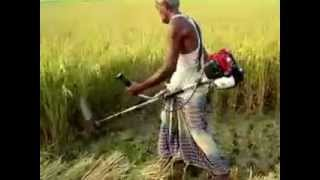 getlinkyoutube.com-Paddy Rice Cutter ধান কাটার মেশিন
