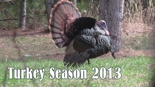 getlinkyoutube.com-Crossbow Turkey Kill
