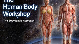 getlinkyoutube.com-The Human Body Workshop