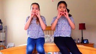 """The Llama Song - Twaimz"" Fan Video"