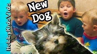 getlinkyoutube.com-HobbyKids Reaction to FIRST DOG! Surprise Pet Behind the Scenes HobbyPuppy HobbyKidsVids